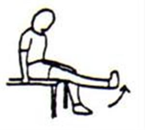Bảng hướng dẫn tập phục hồi chức năng sau mổ cho bệnh nhân tạo hình chéo trước khớp gối bằng mảnh ghép đồng loại